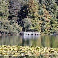 I Luoghi del Cuore-Laghi di Monticchio, LAGHI DI MONTICCHIO, RIONERO IN VULTURE (PZ )