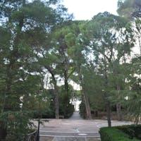 viale della villa di palazzo Barracco, VILLA DI PALAZZO BARRACCO, SANTA SEVERINA (KR )
