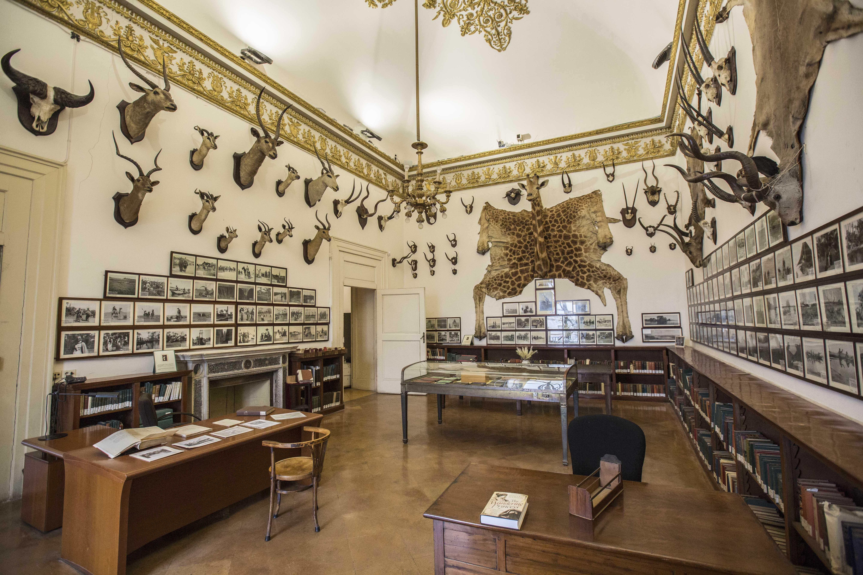 Biblioteca nazionale vittorio emanuele iii i luoghi del cuore fai