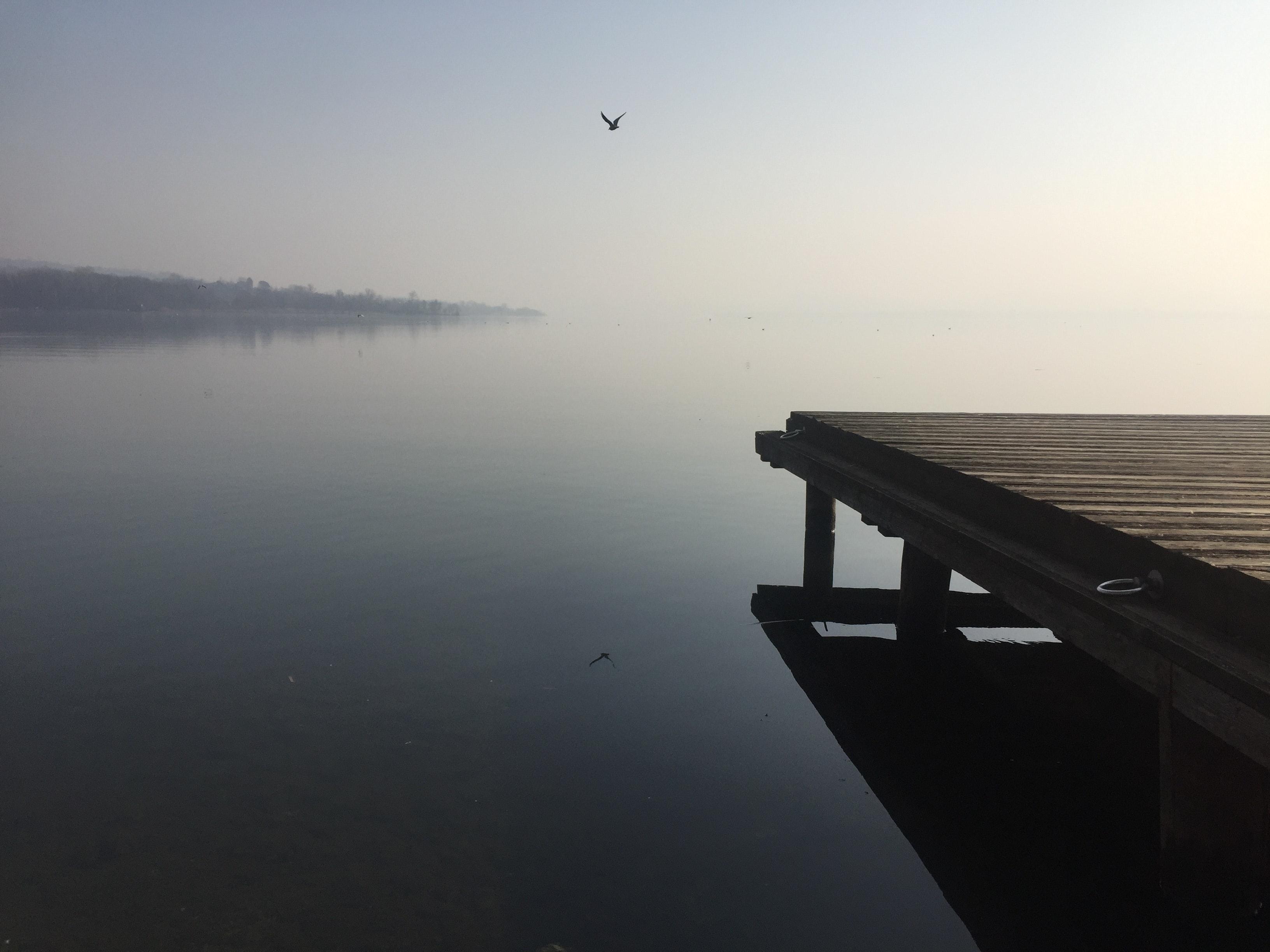 Lago di Varese, VILLA DELLA PORTA BOZZOLO, CASALZUIGNO (VA )