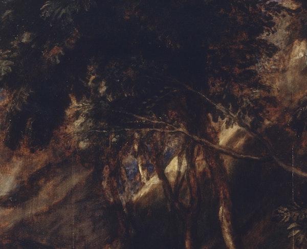 Le vite di Tiziano. Alchimie cromatiche