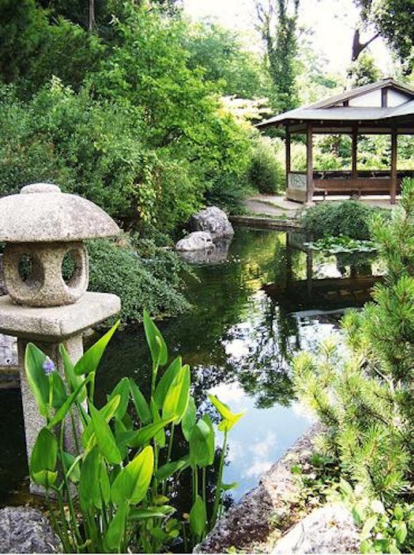 il giardino giapponese e l 39 orto botanico di roma evento fai