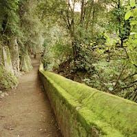 Vista da uno dei sentieri interni, PARCO VILLA GREGORIANA, TIVOLI, ROMA
