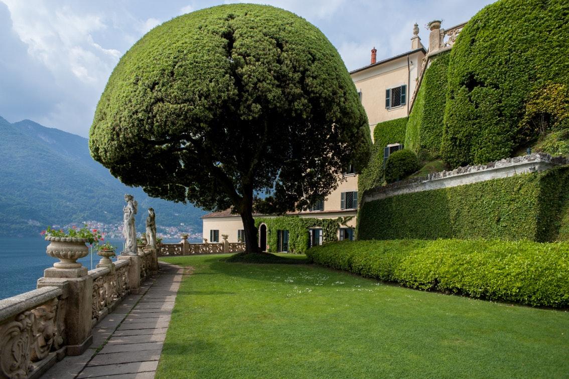 Veduta del giardino con il grande leccio, VILLA DEL BALBIANELLO, TREMEZZINA, COMO
