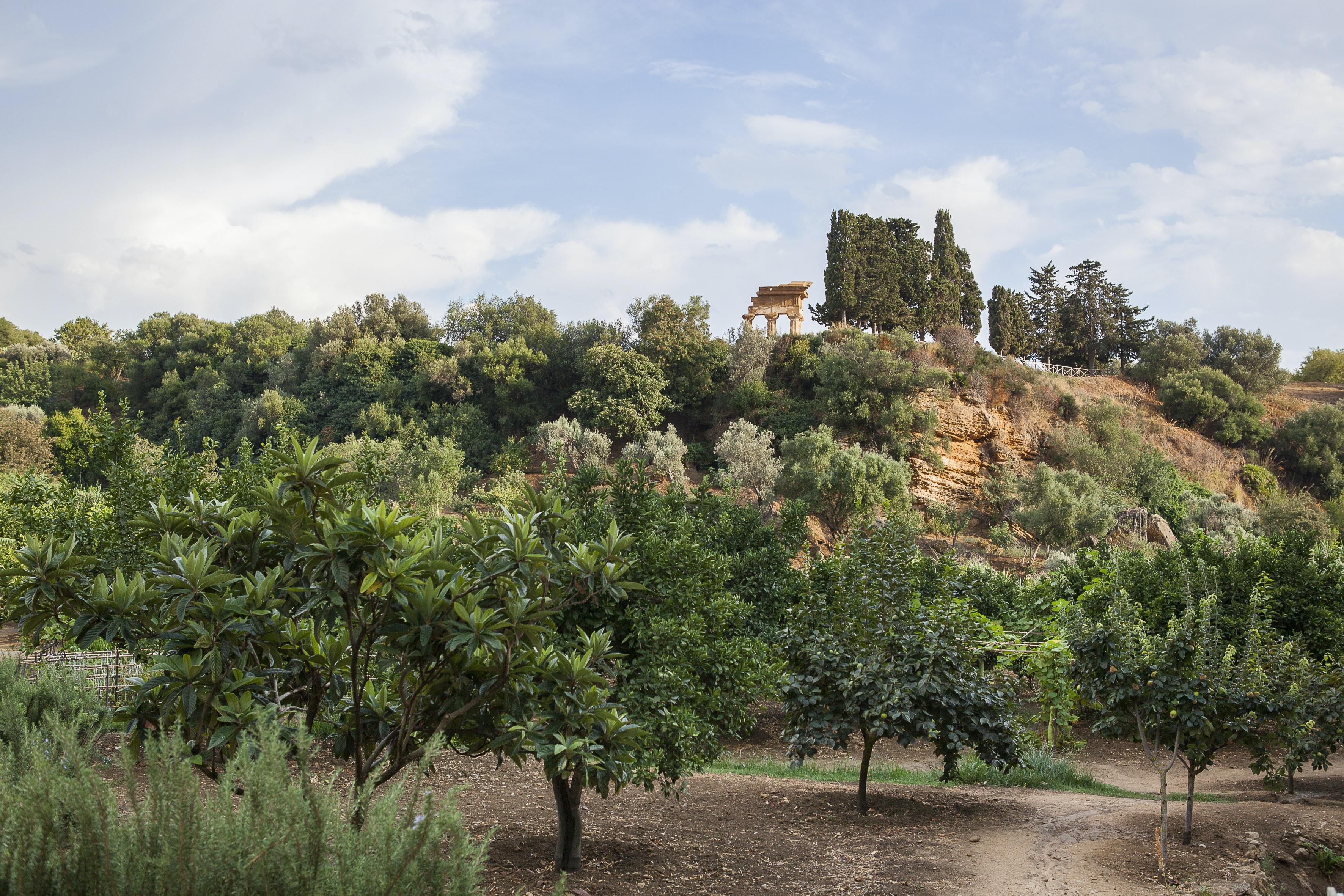 GIARDINO DELLA KOLYMBETHRA | ph. Vincenzo Cammarata | © FAI - Fondo Ambiente Italiano