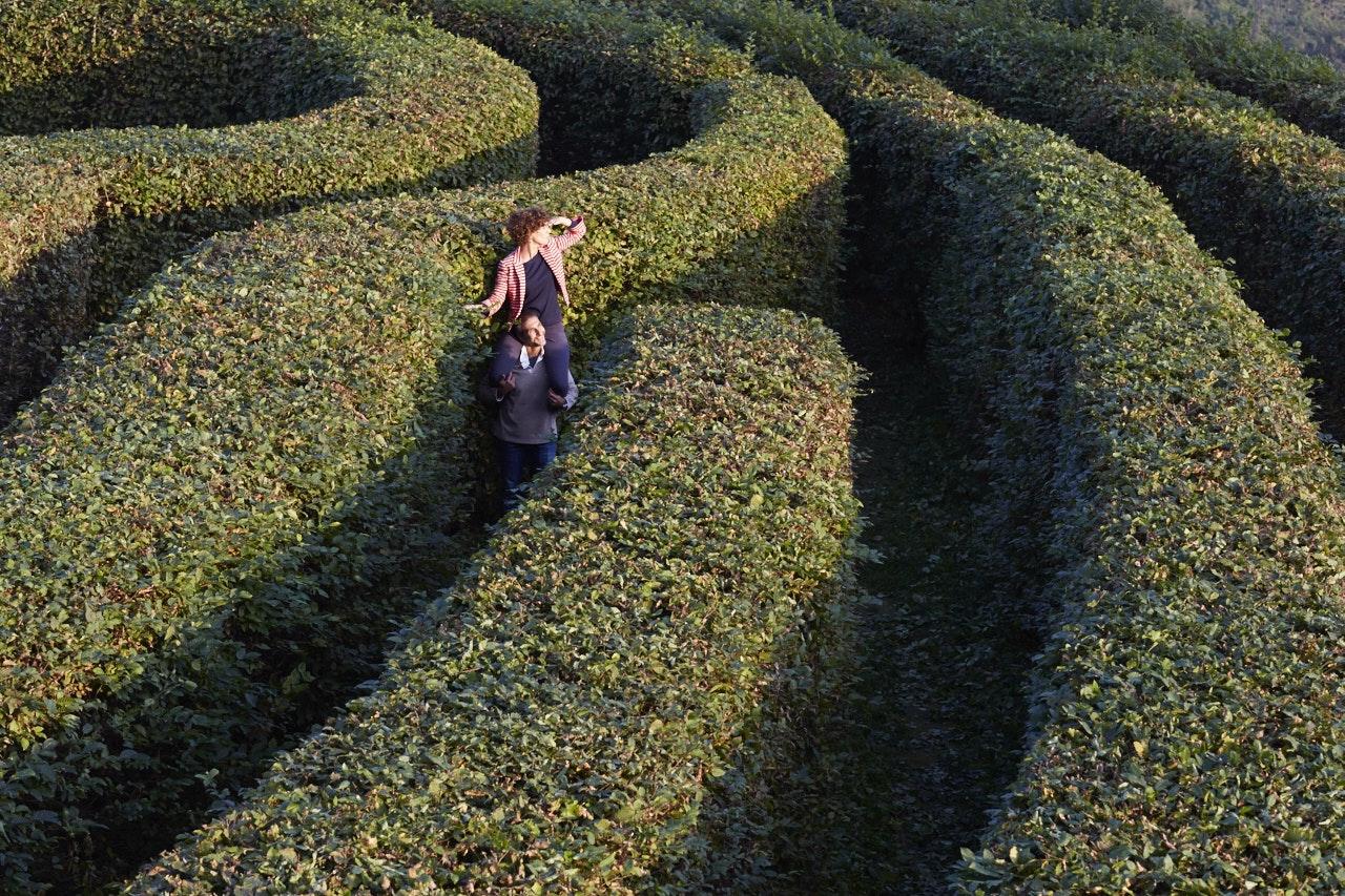 Il labirinto, CASTELLO E PARCO DI MASINO, CARAVINO (TO )