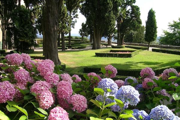 Il Giardino dei Cipressi, CASTELLO E PARCO DI MASINO, CARAVINO (TO )